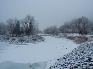 River_calgary